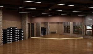 программа для фитнес клубок установлена в Estetika