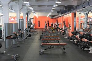 Программа для фитнес клуба установлена в GordeyGym